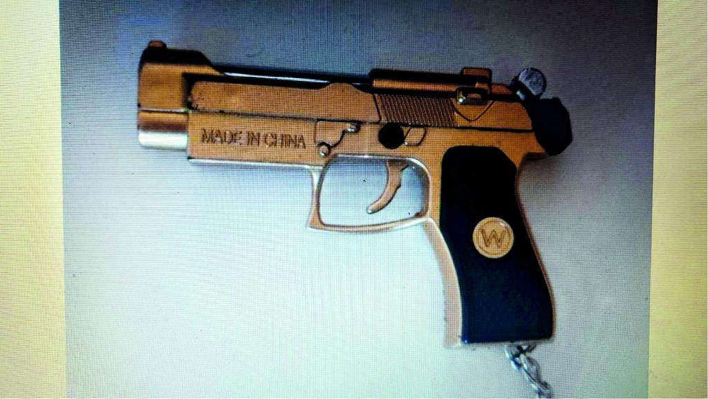 האקדח שפגע בעינה של הסייעת