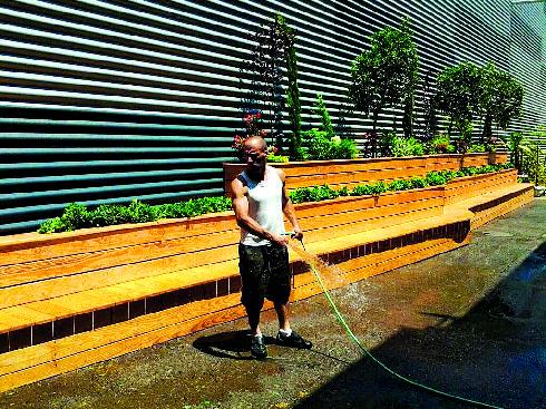 עובדים בגינה