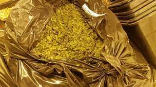 הסמים שהתגלו בדירה