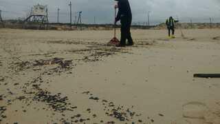 עבודות ניקוי זפת על החוף