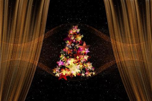 עץ אשוח. לא עץ חג המולד | צילום: pixabay