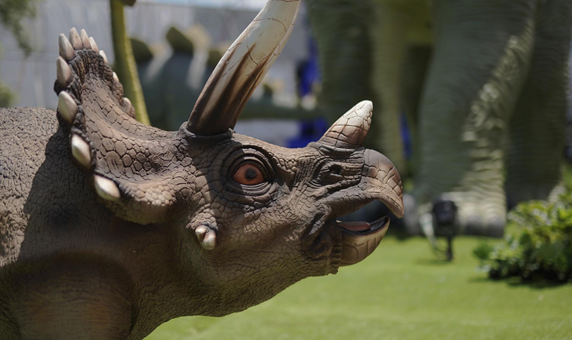 פארק הדינוזאורים בראשון | צילום: יניב מזרחי