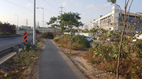 """חלק מהאיזור בו יעבור האופנידן ליד משה דיין   צילום: עיריית ראשל""""צ"""