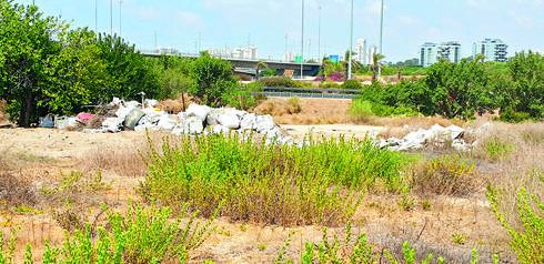 פסולת שהושלכה באתר | צילום: פרטי